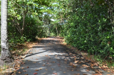 This is the path that veers away from road 187.